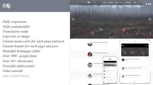Elly – Responsive WordPress Theme for Blog